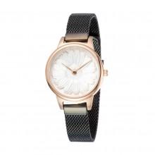 Reloj Daniel Klein Trendy DK11952-4 (Femenino)